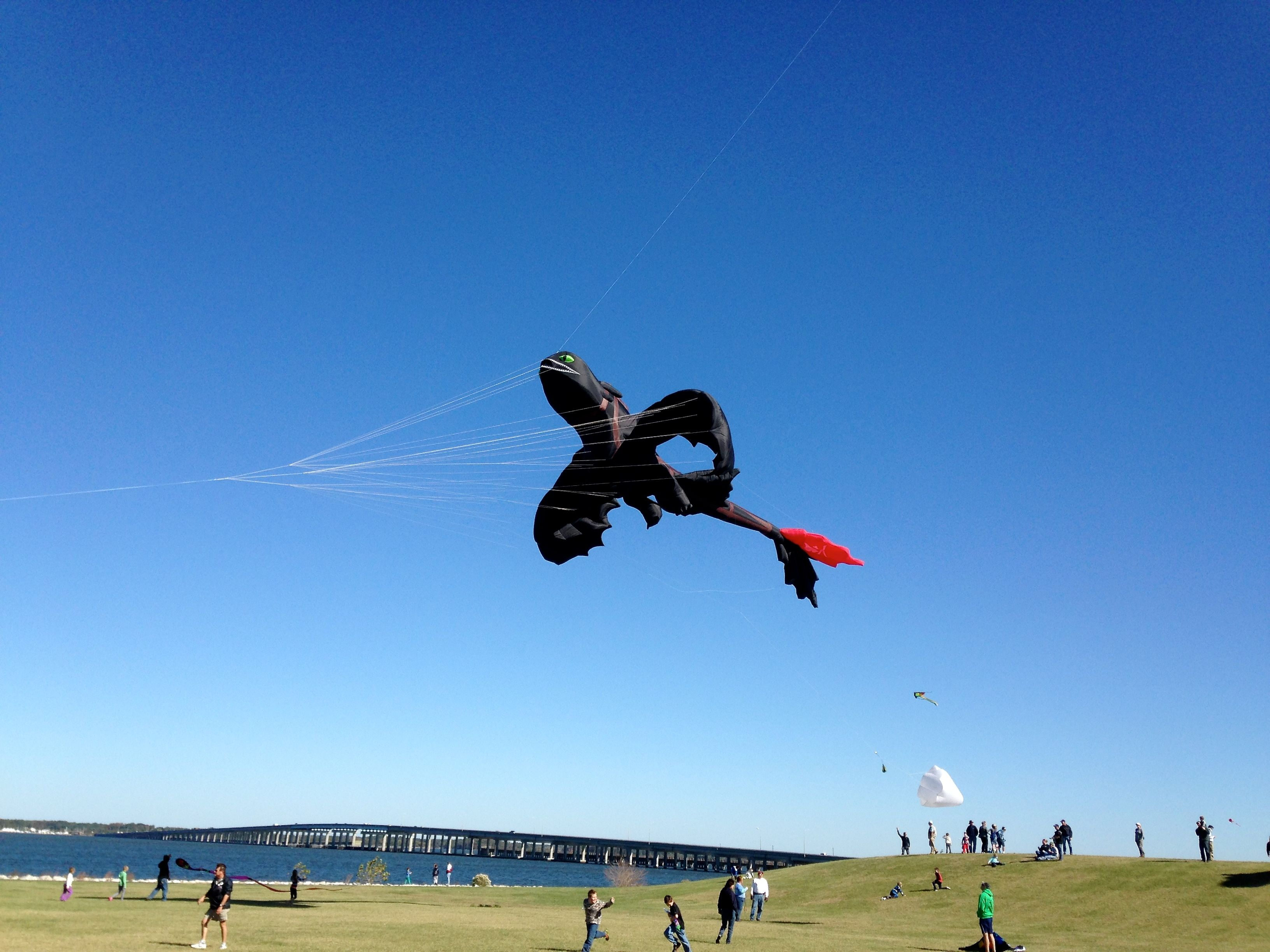 Sailwinds Kite Festival Lines And My Life